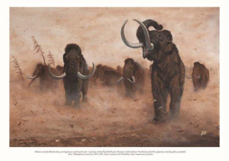 Pohlednice s motivem z knihy Morava v době ledové