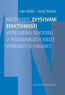 Možnosti zvyšování efektivnosti veřejného sektoru v podmínkách krize veřejných financí